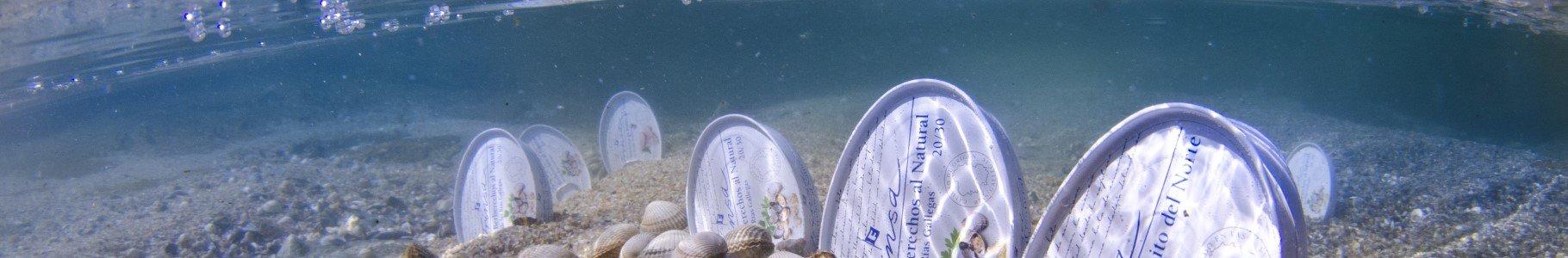 Latas de conserva Frinsa en el mar
